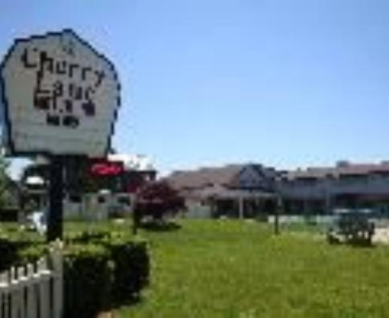 تشيري لان موتور إن: Cherry Lane Motor Inn Thumbnail