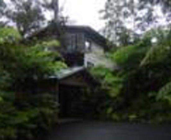 تارا فيرما إن - فولكانو: Tara Firma Inn Volcano Thumbnail