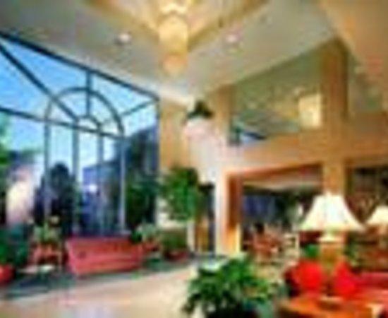 Sheraton Hartford South Hotel: Hartford Marriott Rocky Hill Thumbnail