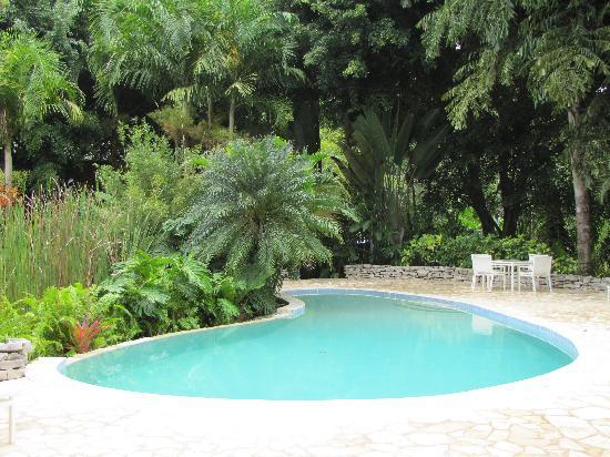 Belcampo Lodge: pool