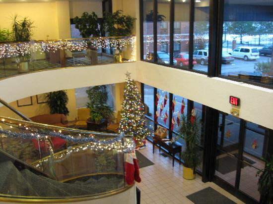 lobby with holiday decorations picture of comfort inn. Black Bedroom Furniture Sets. Home Design Ideas