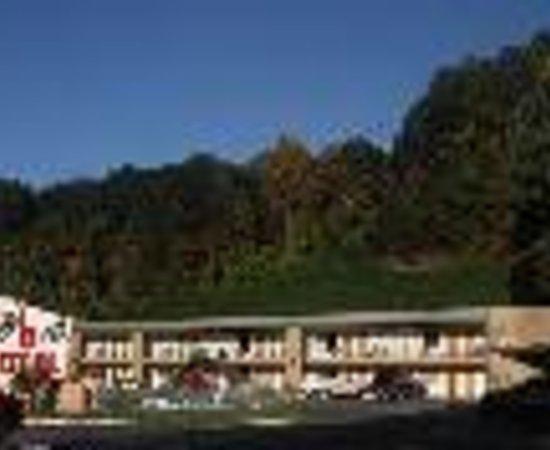 写真Teddy Bear Motel & Restaurant枚