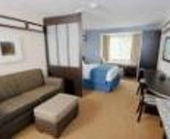 Microtel Inn & Suites by Wyndham Brooksville: Microtel Inn & Suites Thumbnail