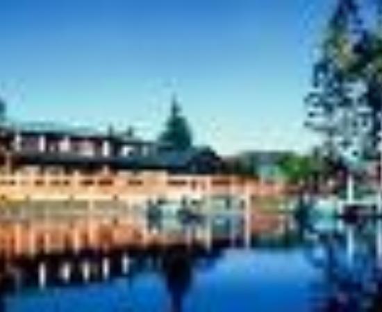 Tall Timber Lodge Thumbnail