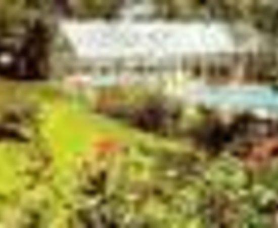 Photo of Colonial Village Motel & Cottages Dennis Port