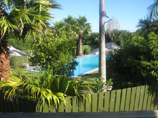 Kerikeri Homestead Motel & Apartments: view from our motel room to the pool