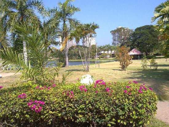 Beach Garden Hotel: View from cottage room