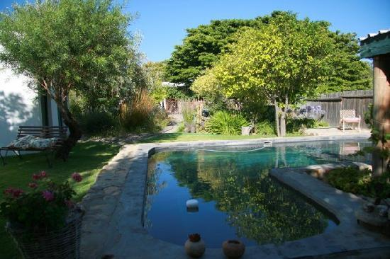 Onse Rus Guest House: The pool