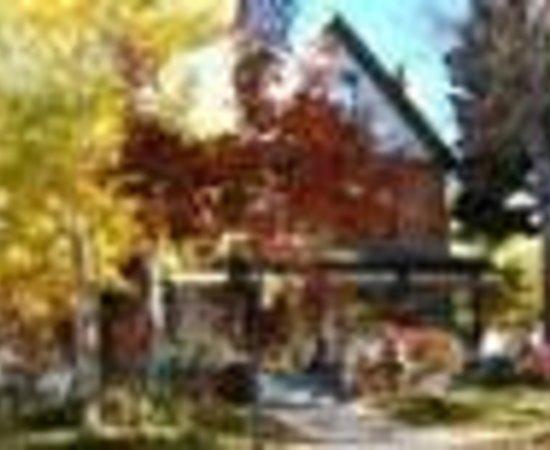 The Olive Branch Inn Thumbnail