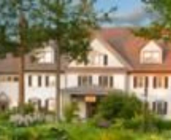 The Essex, Vermont's Culinary Resort & Spa Thumbnail
