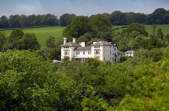 The Falcondale Restaurant: The Falcondale Hotel and Restaurant
