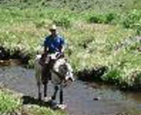 Black Mountain Ranch: Black Mountain Ranch Thumbnail