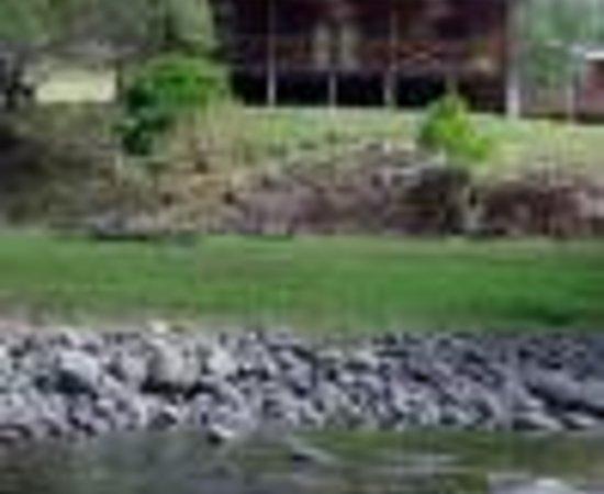 Upper Allyn Australia  city images : ... Picture of The Allyn Riverside Cabins, Upper Allyn TripAdvisor