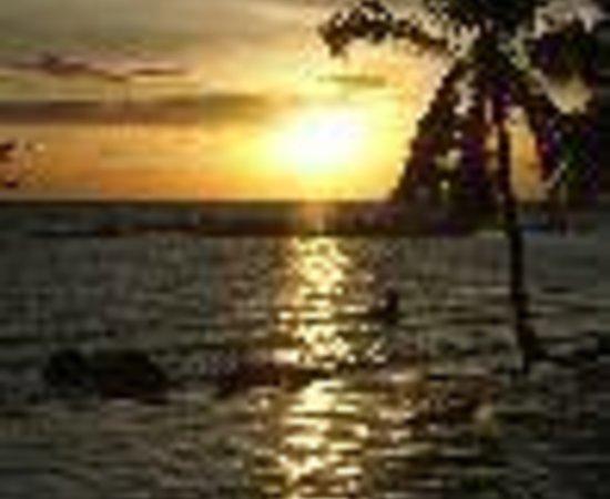 Sunset Cove Resort: Sunset Cove Thumbnail