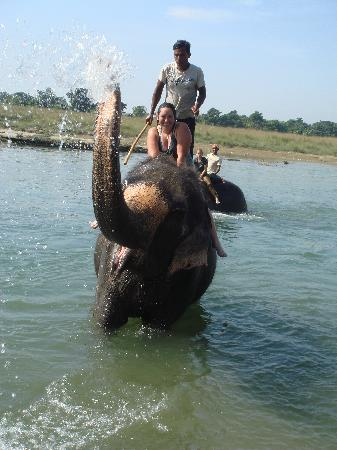 Chitwan National Park, Nepal: Elephant Bath