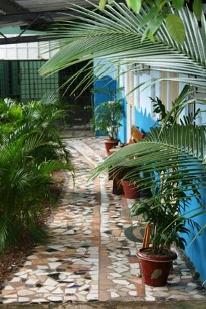 Hostal Mamallena: In front of the private rooms