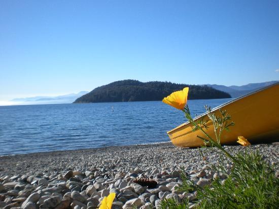 Cabanas La Deseada: La bajada al lago a pie unos 50 mts de las cabañas
