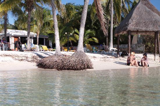 Playa Gaviota: The view from the water