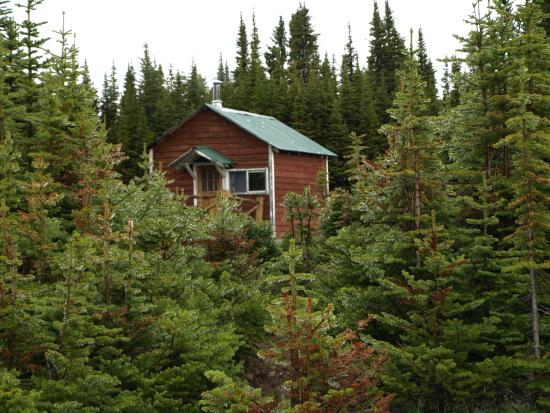 Our Cabin Picture Of Tonquin Valley Backcountry Lodge