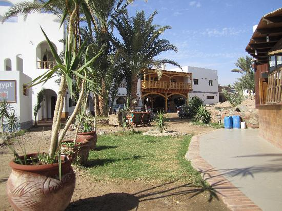 Dahab Divers South Sinai Hotel & Dive center: View of hotel accommodation and dive centre
