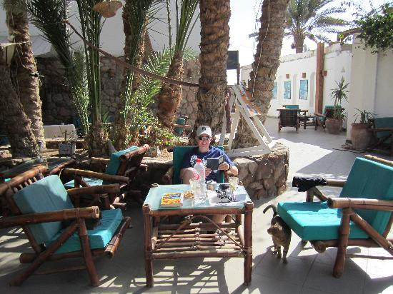 Dahab Divers South Sinai Hotel & Dive center: View of hotel seating/cafe area