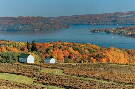 Autumn view of keuka lake picture of hammondsport for Finger lakes fishing report