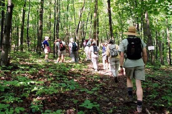 Hammondsport, NY: Hiking