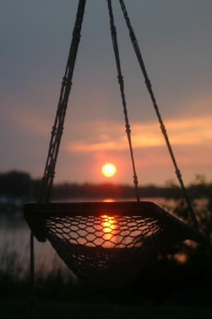 Miles River Guest House: Basket Swing