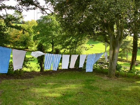 Knockrue House Bed & Breakfast: Eileen's clean linens hung to dry