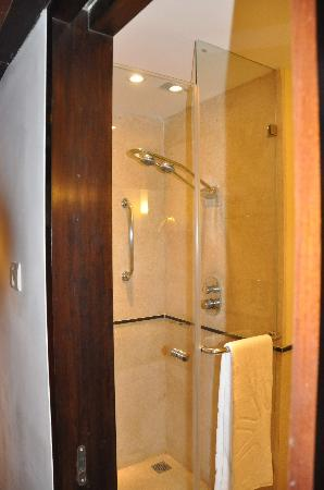 ‪‪Vivanta by Taj - President, Mumbai‬: Shower‬