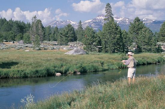 Lake Tahoe (California), CA: Fly Fishing