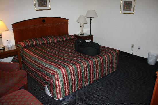 Budget Inn SLO Cal Poly : Room at the Rodeway