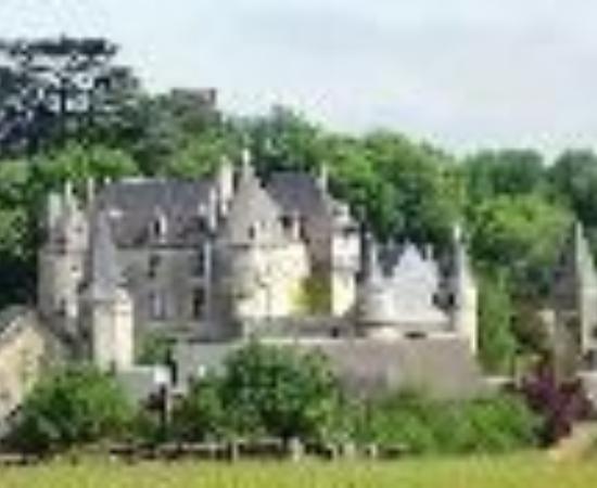 Chateau de La Celle Guenand: Chateau de La Celle - Guenand Thumbnail