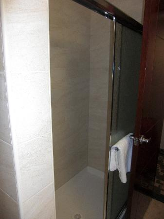 Holiday Inn Express Maspeth, Queen New York: Dusche