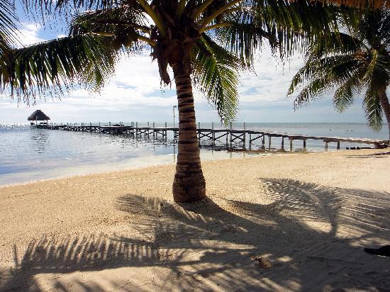 Pelican Reef Villas Resort: Beautiful Beach