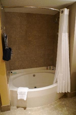 Roman tub/shower combo. Great tub, but very dark when showering ...