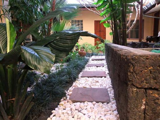 Cool Guesthouse : The patio garden of Cool Guest House