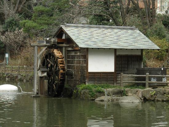 Nabeshima Shoto Park: 水車