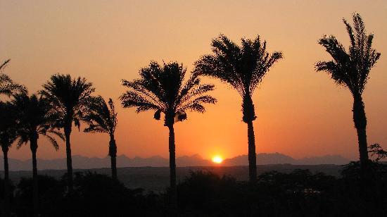 The Grand Makadi Hotel: sunset