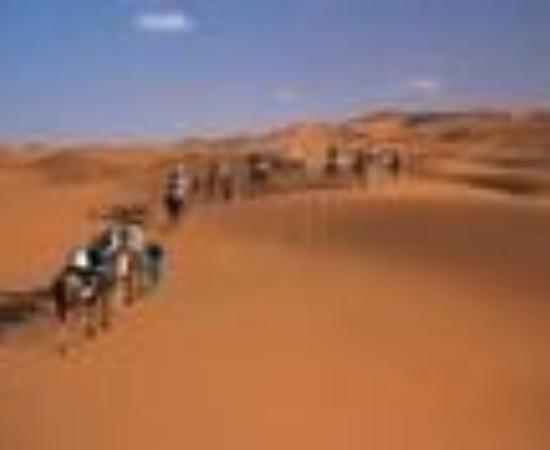 Etoile des Dunes Thumbnail
