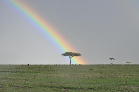 Royal Mara Safari Lodge: rainbow on the mara