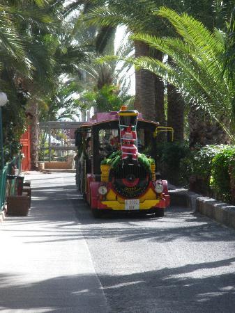 Stella Canaris Chalets Tropical: Le petit train