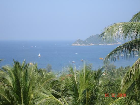 Koh Tao Heights Exclusive Apartments: Perfect view !