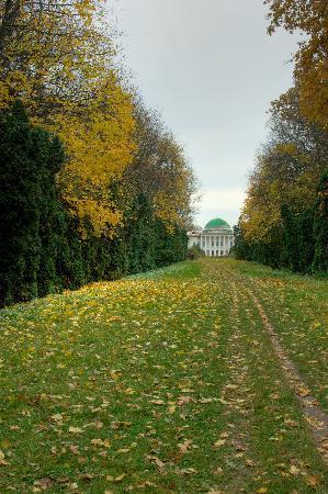 ยูเครน: Sokyryntsi: thuja alley