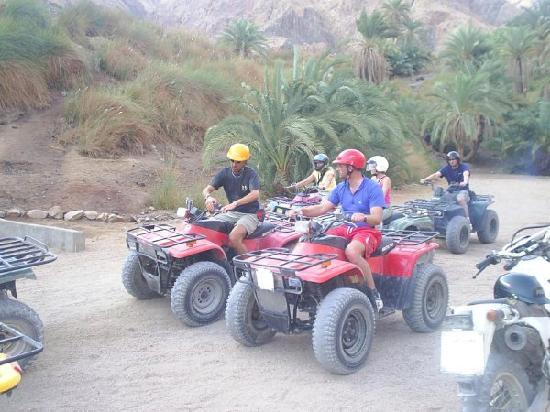 Quad Bike Safari & Rentals: TESCO SAFARI