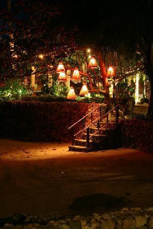 Rocky's Boutique Resort: beach at night