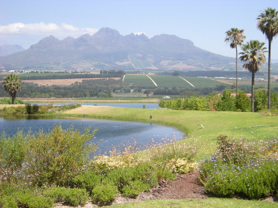 Mytours Day Tours: View 1 from a wine estate