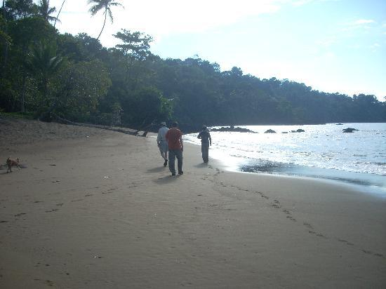 Drake Bay, Costa Rica : Beach Hike