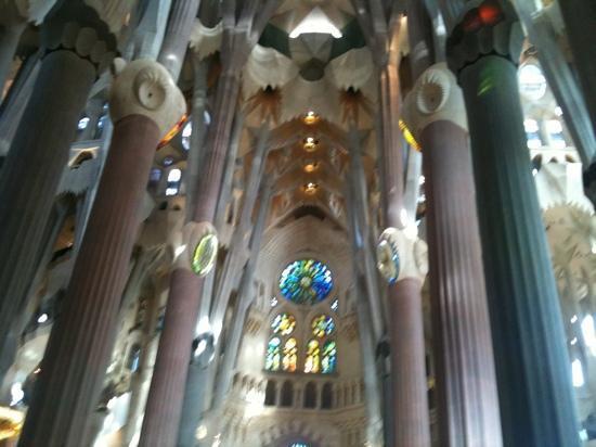 Inside la sagrada familia picture of basilica of the for La sagrada familia inside