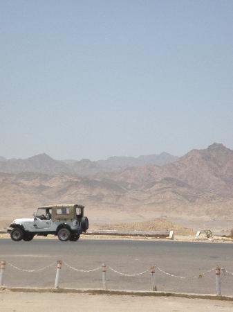 Penguin Village: Jeep Trek Through The Desert
